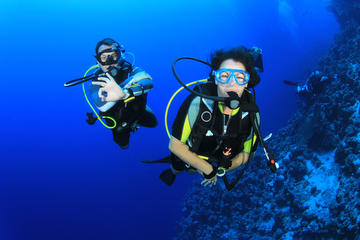 Scuba Diving for Beginners in...