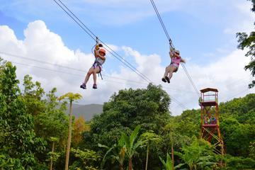 Kombineret svævebanetur og vandretur i El Yunque-regnskoven
