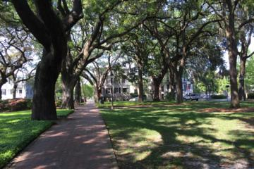 Day Trip Secrets of Savannah Walking Tour near Savannah, Georgia