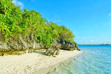 Ile aux Aigrettes Nature Reserve Tour Including Blue Bay Beach & Mahébourg