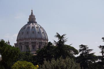 Zonder wachtrij: tour door het Vaticaan inclusief de Sixtijnse kapel ...
