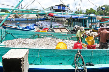 Phu Quoc National Park and Cua Can River Day Trip