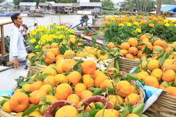 Private Full-Day Mekong Delta Tour by...