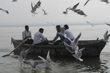 Ganga Ghat and Morning Rituals Guided Boat Tour in Varanasi