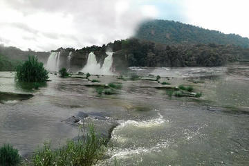 Kochi Athirappilly and Vazhachal Falls Private Day Trip with Lunch