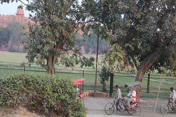 Old Delhi Tour with Gandhi Museum Including Rickshaw Ride