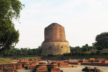 Private Tour: Sarnath Day Tour including Sarnath Museum