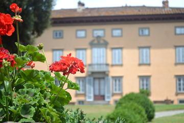 Lezione di cucina in una villa storica nei pressi di Lucca