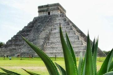 Private Day Trip: Ek Balam and Chichen Itza with Cenote and Tequila Factory