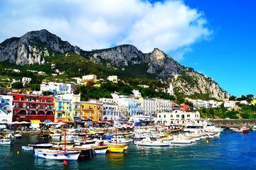 Excursion sur l'île de Capri Anacapri et belvédère Axel Munthe avec...