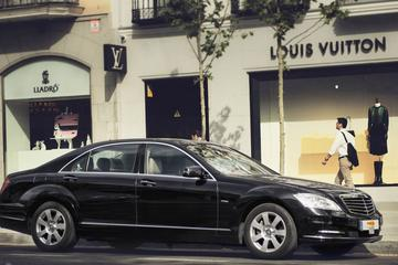 Private Departure Transfer: Brussels Hotel to Brussels Railway Station