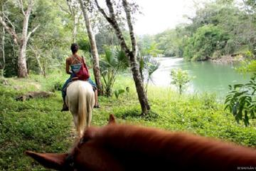 Horseback Riding and Tour in San Lorenzo Organic Farm