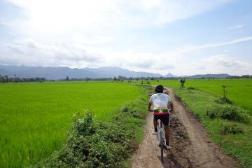 Visite d'une matinée en vélo à Mandalay