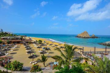 Heldagstur på östkusten inklusive snorkling och lunch