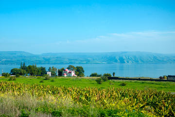 Bibilical Highlights of the Galilee On A Small Group Tour From Tel...
