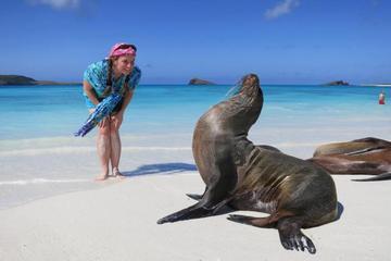 Pase a las principales excursiones de las Galápagos
