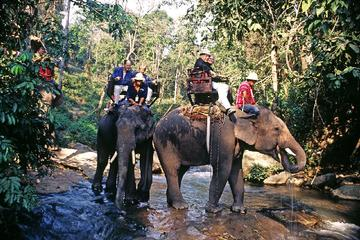 サムイ島のマウンテン サファリと象トレックの終…