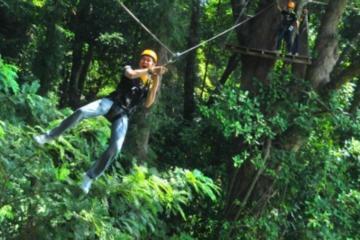 プーケット発:ジップラインで楽しむ3時間のジャングル アドベンチャー