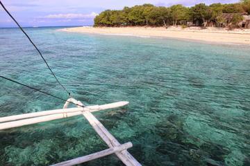Balicasag Island Day Trip