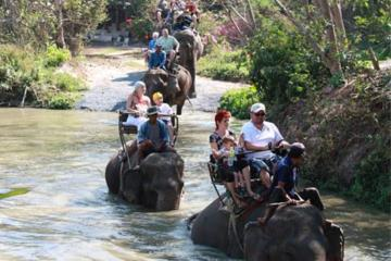 Elephant Trekking from Pattaya