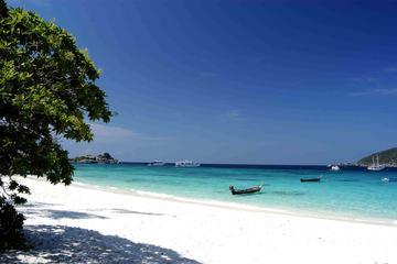 Excursion en hors-bord avec déjeuner dans les îles Similan au départ...