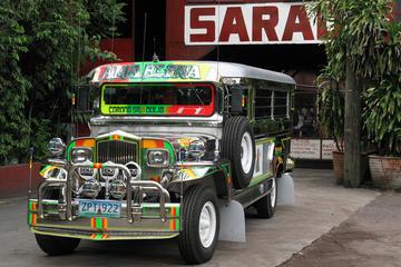 Full-Day Tagaytay City Tour from Manila