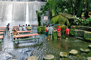 Villa Escudero Day Trip with Lunch from Manila