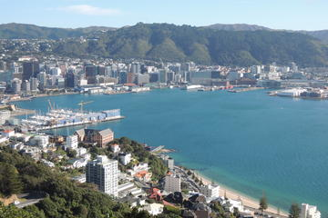 Wellington Shore Excursion: City Scenic Private Tour
