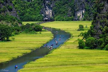 Dagtour naar Hoa Lu en Tam Coc