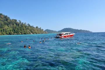 Full-Day Snorkel Trip to Koh Rok by Speedboat from Koh Lanta