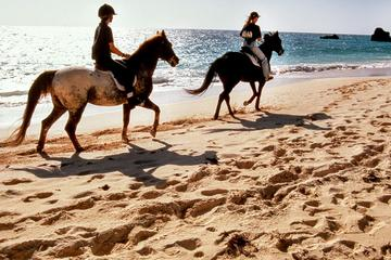 Krabi Horse Riding at Ao Nam Mao Beach