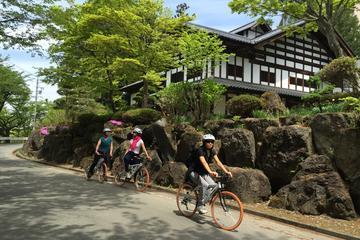 長野でのスノーモンキーとサイクリング全日ツアー