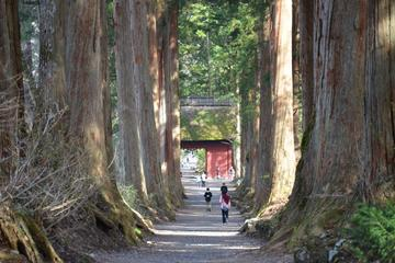 Full Day Togakushi Nature Hike and Ninja Tour