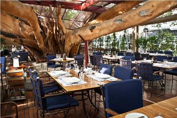 Dinner at Figueira Rubaiyat Restaurant