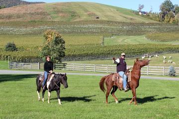 Private Vineyard Tour on Horseback