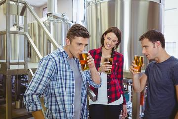 Day Trip Private Virginia Craft Beer Tour near Charlottesville, Virginia