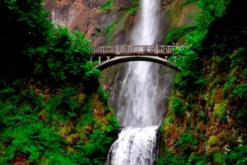 Day Trip Columbia River Gorge Waterfalls Tour from Portland near Portland, Oregon