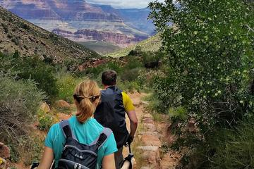 Book Private Grand Canyon Day Hike on Viator
