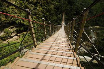 台北発、南投の吊り橋を歩く終日ツアー