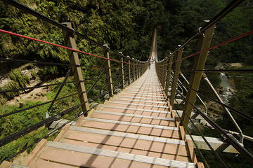 Nantou Walking On Sky Ladder Day Tour...