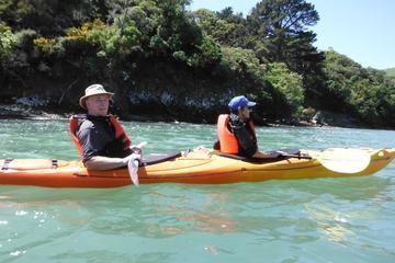 Excursion en bord de mer: Safari en kayak avec la faune marine à...