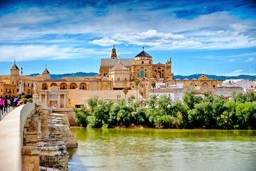 Alcázar, Mezquita, de Joodse wijk en de synagoge: begeleide dagtour ...