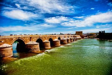 Córdoba monumental: visita guiada a pie de 3 horas