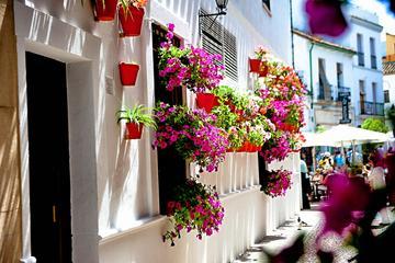 Encanto de Córdoba: visita guiada a pie de 2 horas