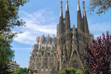Barcelona Private Tour with...