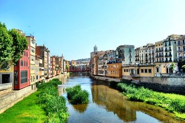 Private Girona and Figueres Tour from...