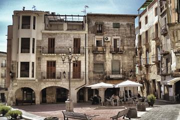 Private Half Day Tarragona Tour from...