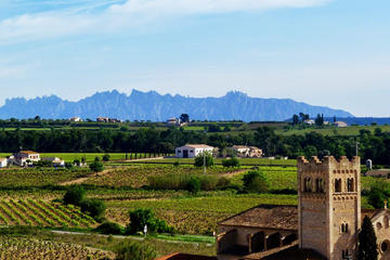Private Montserrat and Penedes Day Tour form Barcelona