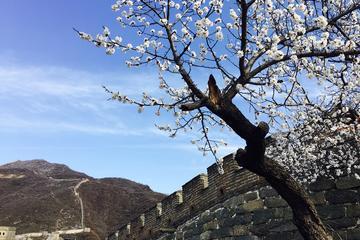 Early Bird Great Wall Tour at Mutianyu