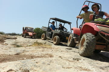 Desert Tour from Tel Aviv with Buggy and Camel Ride
